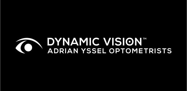 Dynamic Vision logo